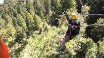 Private Horseback Ride and Zip Line in Wine Country from San Francisco, San Francisco, Horseback...