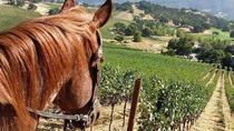Private Napa Sonoma Wine Tour and Horseback Ride from San Francisco, San Francisco, Horseback Riding