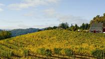 Private Santa Cruz Mountains and Bay Area Wine Tour From San Francisco