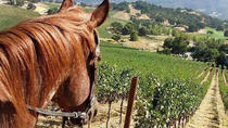 Private Wine Tour of Sonoma County, Scenic Zip Lining and Horseback Riding, San Francisco,...