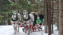 Small Private Sleighride, Montreal, 4WD, ATV & Off-Road Tours