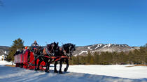 Tremblant Sleighride, Montreal, 4WD, ATV & Off-Road Tours