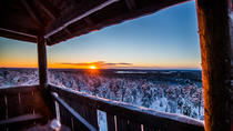 Explore the Wilderness - Photography Expedition, Rovaniemi, Day Trips