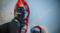 Wilderness snowshoe adventure