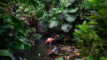 Victoria Butterfly Gardens, Victoria, Attraction Tickets