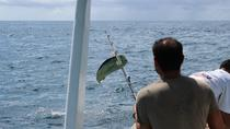 Private Fishing Tour from Puerto Vallarta, Puerto Vallarta, null