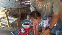 Rural and beach towns of Nayarit, Puerto Vallarta, Day Trips