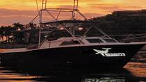 Small-Group Sunset Cruise in Puerto Vallarta, Puerto Vallarta, Dolphin & Whale Watching