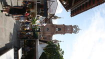 Walking City tour- Puerto Vallarta, Puerto Vallarta, Private Sightseeing Tours