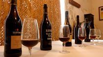Introduction to Sherry Wine World with Tastings, Seville, Food Tours