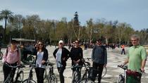 Private Seville Guided Bike Tour, Seville, Bike & Mountain Bike Tours