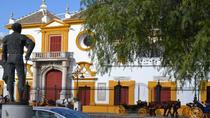 Secrets of Seville Private Walking Tour, Seville, Bike & Mountain Bike Tours