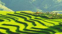 Sapa Easy Trek 2-day with Night Train and hotel from Hanoi, Hanoi, Hiking & Camping