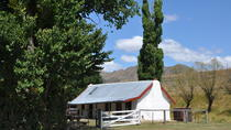 Marlborough High Country Farm Tour from Blenheim, Blenheim, Family Friendly Tours & Activities