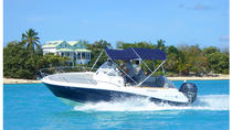 Boat rental To go by yourself CAP CAMARAT, St Martin, Boat Rental