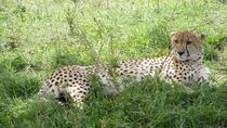 4 Days Hemingway Safari, Nairobi, Cultural Tours