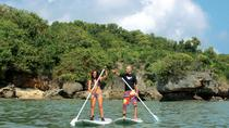 PRIVATE STAND UP PADDLE LESSON, Kuta, Other Water Sports