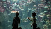 CretAquarium Entrance Ticket, Heraklion, Attraction Tickets