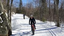 Fatbike on the Mountain Tour, Montreal, Cultural Tours