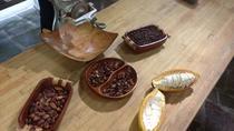 Chocolate Making Workshop, Guadeloupe, Chocolate Tours