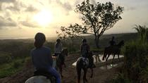 Excursion à cheval, Guadeloupe, Horseback Riding