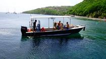 Guadeloupe Scuba Diving Tour for first-timers, Guadeloupe, Scuba Diving