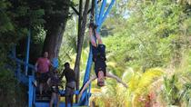 Zip and Dip Tour, Roatan, Ziplines