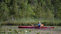 Door County Wetlands Kayak Tour, Green Bay & Door County, Kayaking & Canoeing