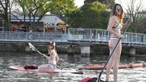 Paddle Board Erfahrung in Austin, Austin, Stand Up Paddling