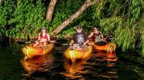 San Marcos River Adventure Kayak Tour, Austin, Kayaking & Canoeing