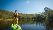 Instructed Stand Up Paddle Boarding Tour, Brisbane, 4WD, ATV & Off-Road Tours