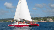 Three Hour Snorkel Tour, Barbados, Sailing Trips