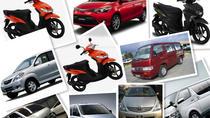 Bohol Transport - Car-Van-MotorBike, Bohol, Airport & Ground Transfers