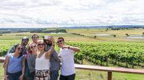 Yarra Valley Wine Tour - Wine Tasting Day Tour in a Spacious 8-Seat Van, Melbourne, Bus & Minivan ...