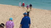 Pink Sand Shopping Tour, Bermuda, Shopping Tours