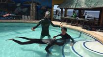 Full-Day AIDA 1 Freediver Course in Moalboal, Cebu, Other Water Sports