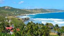 Barbados Island Tour with Lunch and Wildlife Sanctuary, Barbados, Full-day Tours
