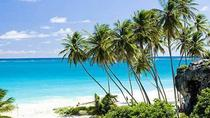 Ganztägige Küsten-Tour in Barbados, Barbados, Full-day Tours