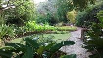 Garden Delight Full-Day Tour in Barbados, Barbados, Nature & Wildlife