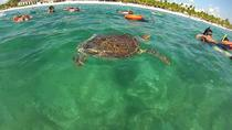 PRIVATE TOUR to Akumal Bay Sea Turtle Snorkeling and Cenote, Tulum, Private Sightseeing Tours