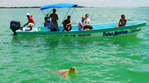 Small-Group Tour: Sian Ka'an Biosphere Reserve Day Trip from Tulum, Tulum, null