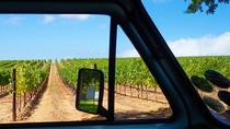 Wine Beer and Biltong Safari (Stellenbosch Experience), Cape Town, Wine Tasting & Winery Tours