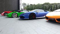 Supercars Singapore Explorer Tour, Singapore, Custom Private Tours
