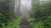 Mt Haguro Pilgrim Walking Tour, Tohoku, Cultural Tours