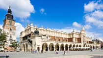 Krakow in a Day: 3-Hours City Tour by Electric Car, Krakow, Full-day Tours
