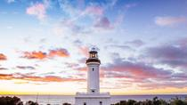 Central Coast Private Day Tour from Sydney Including Wildlife and Reptile Park, Sydney, Private ...