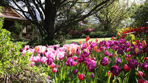 Spring Gardens in the Blue Mountains Private Tour Limited Time Only, Sydney, Private Sightseeing...
