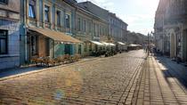 Kaunas day trip - the unsung Hero, Vilnius, Day Trips