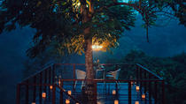 Forest Dining at Tree Deck overlooking lush valley of Ubud, Ubud, Food Tours