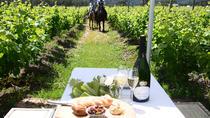 Half Day Wine Trail on Horseback, Western Cape, Horseback Riding